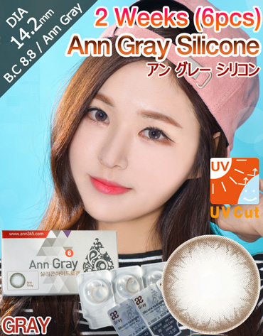 [2 Week/グレー/GRAY] アン グレー シリコン 2週 - Ann Gray Silicone - 2 Weeks (6pcs) [14.2mm]
